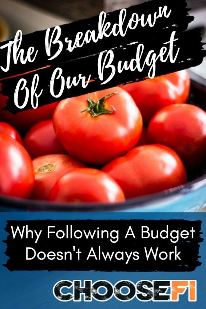 The Breakdown Of Our Budget--Why Following A Budget Doesn't Always Work
