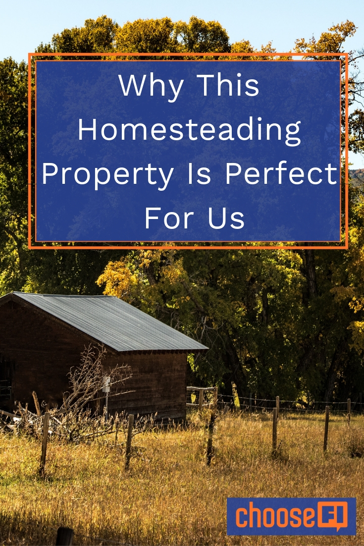 Why This Homesteading Property Is Perfect For Us pin