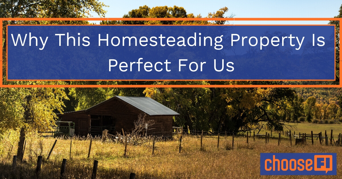 Why This Homesteading Property Is Perfect For Us