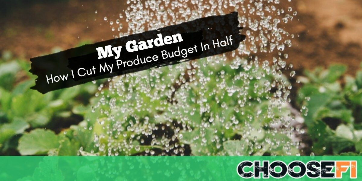 My Garden--How I Cut My Produce Budget In Half