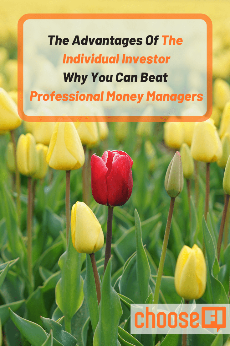 The Advantages Of The Individual Investor: Why You Can Beat Professional Money Managers
