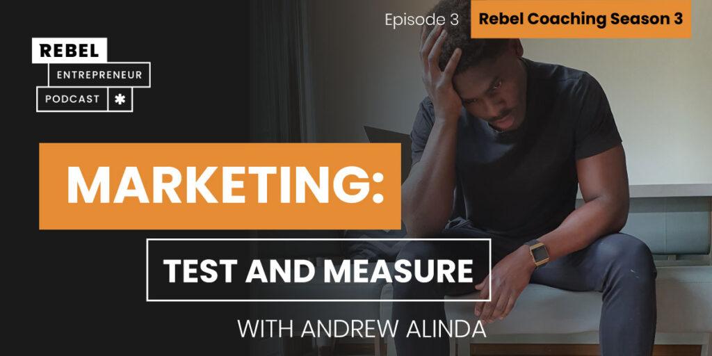Rebel Entrepreneur Coaching Series: Marketing: Test and Measure Artwork